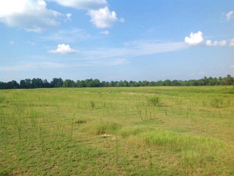 200 Acres : Maplesville : Chilton County : Alabama