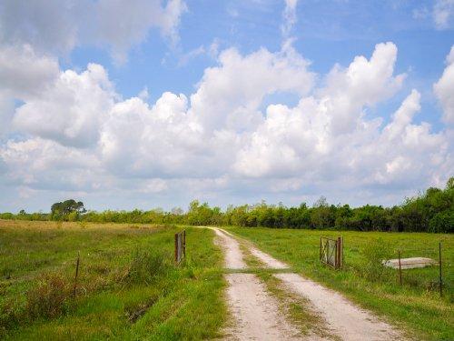 798 Acres Cr 1010 : Nome : Liberty County : Texas