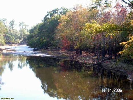 29.21 Acres on the Satilla River : Waycross : Ware County : Georgia