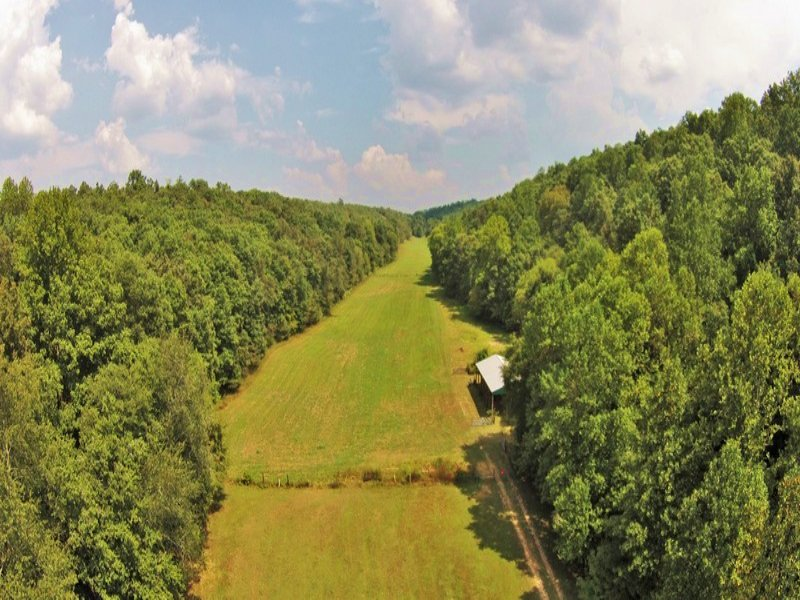 70 Acre Farm : Nunnelly : Hickman County : Tennessee