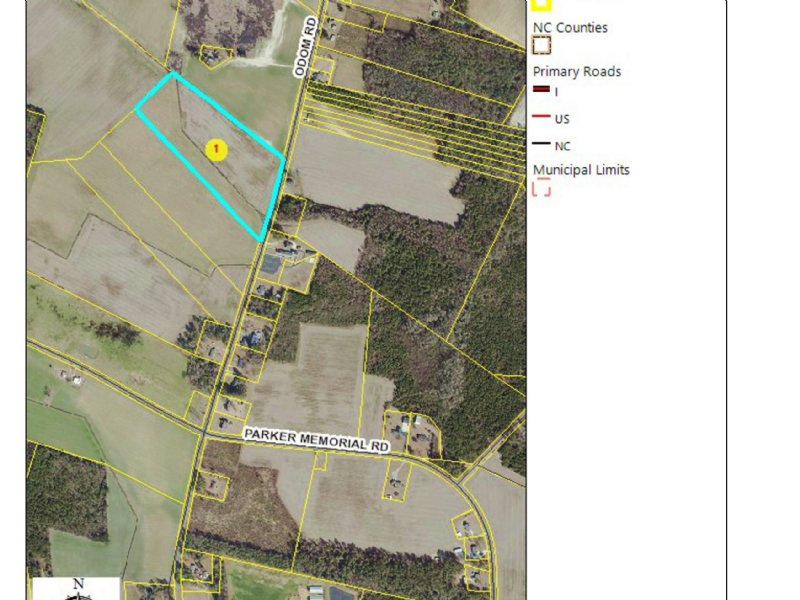 Nice Small Farm : Clinton : Sampson County : North Carolina