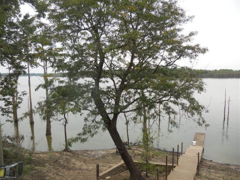 Reduced. Lake Mary Lakefront Camp F : Woodville : Wilkinson County : Mississippi