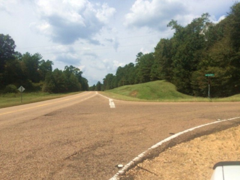 52.00 Acres Commercial Land : Liberty : Amite County : Mississippi