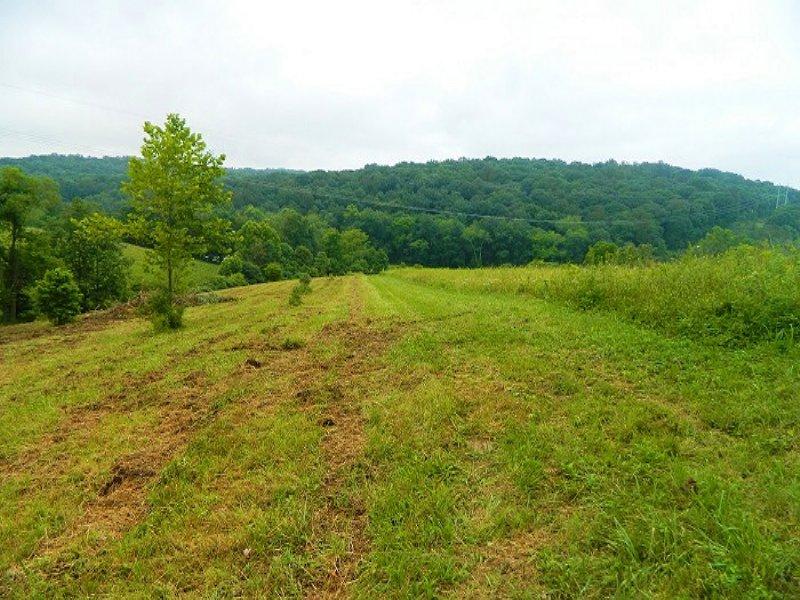 Woodgeard Rd - 2 Acres : Creola : Vinton County : Ohio