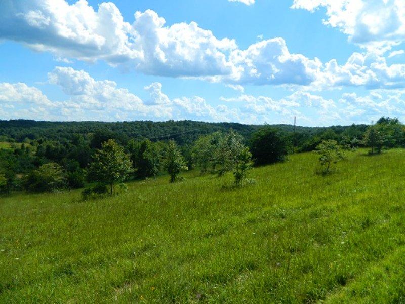 Sr 56 - 5 Acres : Creola : Vinton County : Ohio