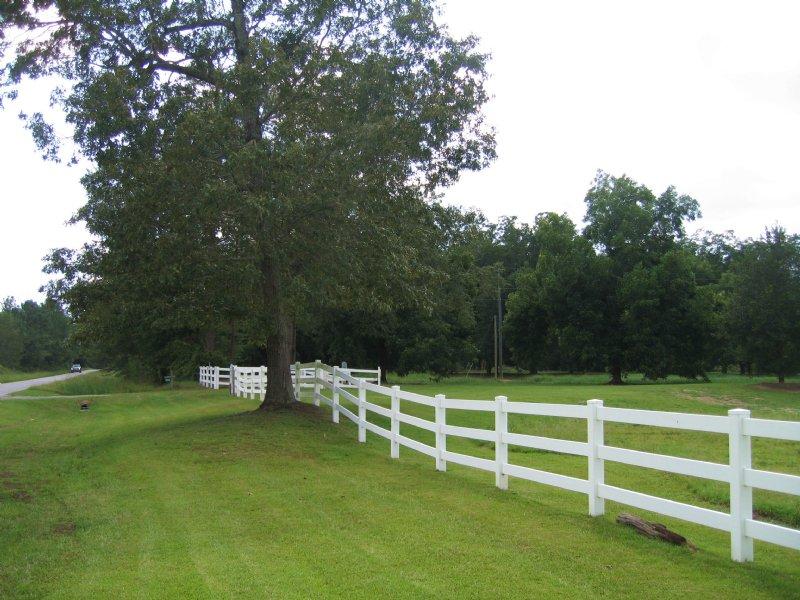 Real Estate Auction: 265+/- Acres : Eastman : Dodge County : Georgia