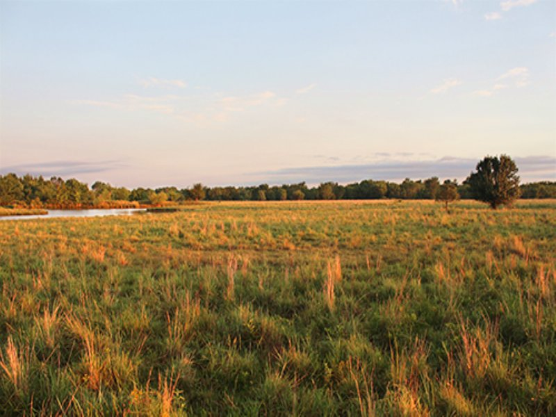 Land Auction, 440+/- Acres In 15 Tr : Tulsa : Tulsa County : Oklahoma