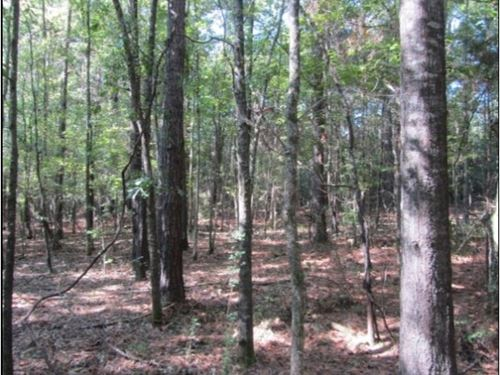 7 Acres In Oktibbeha County : Sturgis : Oktibbeha County : Mississippi