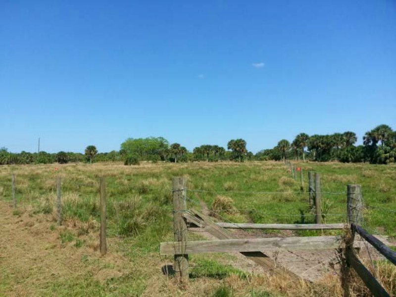 71.73 Ac Of Land Development Oppor. : Port Saint Lucie : Saint Lucie County : Florida