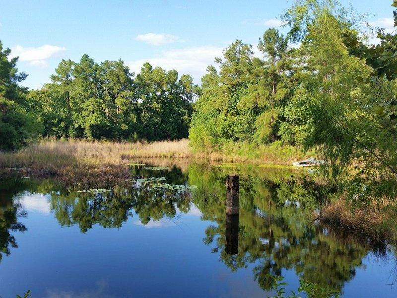 Conroe Commercial Development Land : Conroe : Montgomery County : Texas