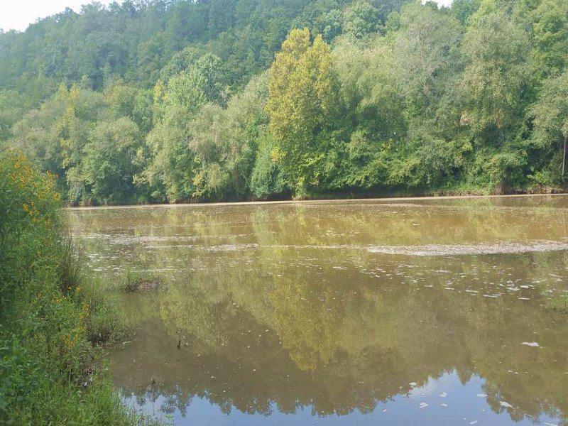 410+/- Ac On Tallapoosa River : Wadley : Randolph County : Alabama