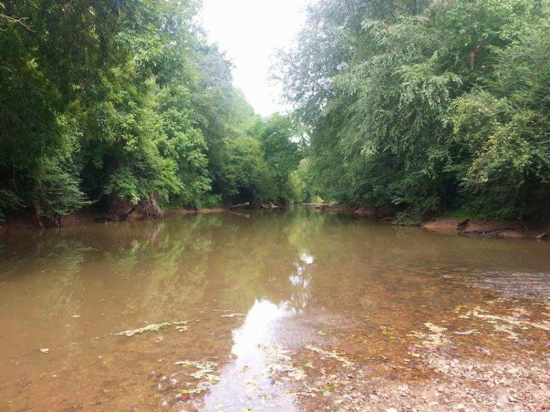 67+/- Ac On The Tallapoosa River : Heflin : Cleburne County : Alabama