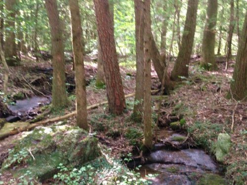 7.02+/- Acres With Creek : Sequatchie : Marion County : Tennessee