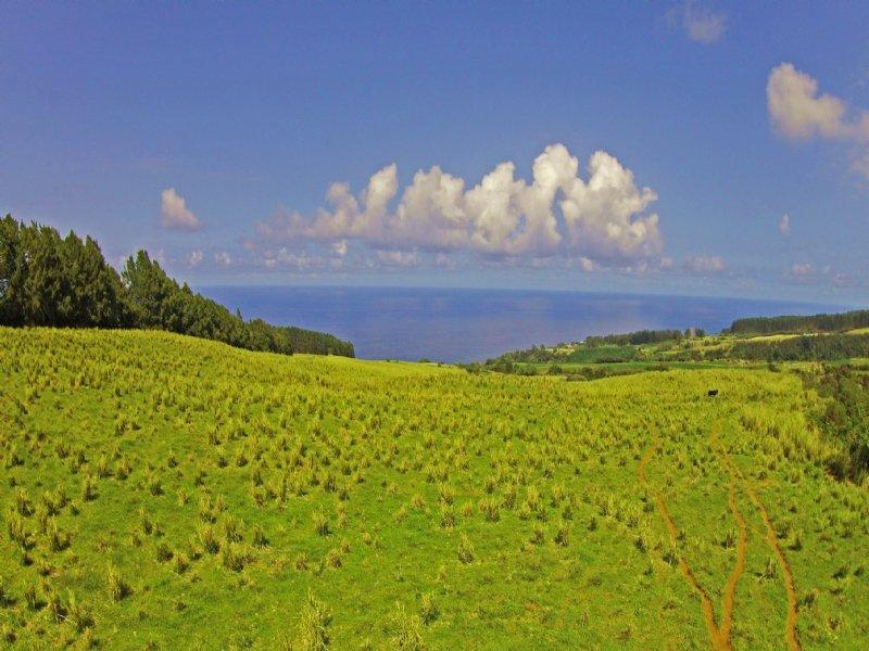 New-maulua Nui Subdivision : Laupahoehoe : Hawaii County : Hawaii