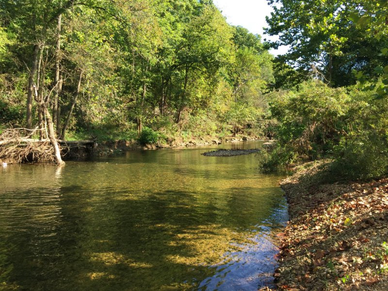3 Acres On James River, $500 Down : Marshfield : Webster County : Missouri