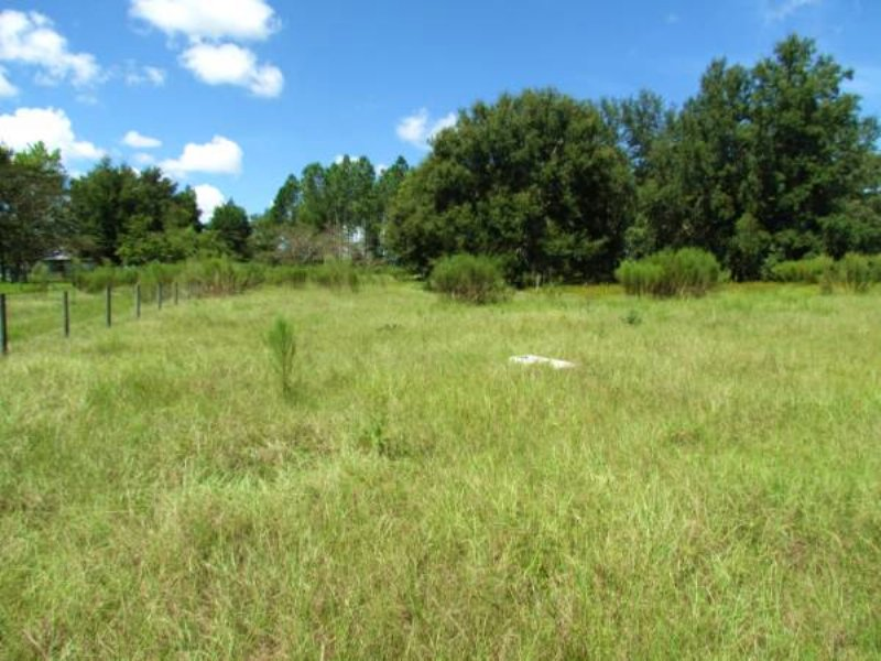 Charming 5 Acres In Brooksville : Brooksville : Hernando County : Florida