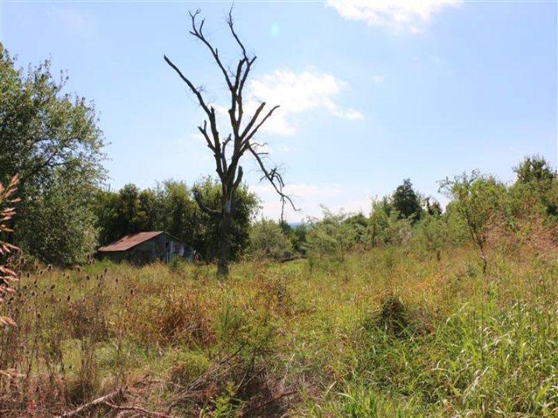 21 M/l Acres : Welling : Cherokee County : Oklahoma