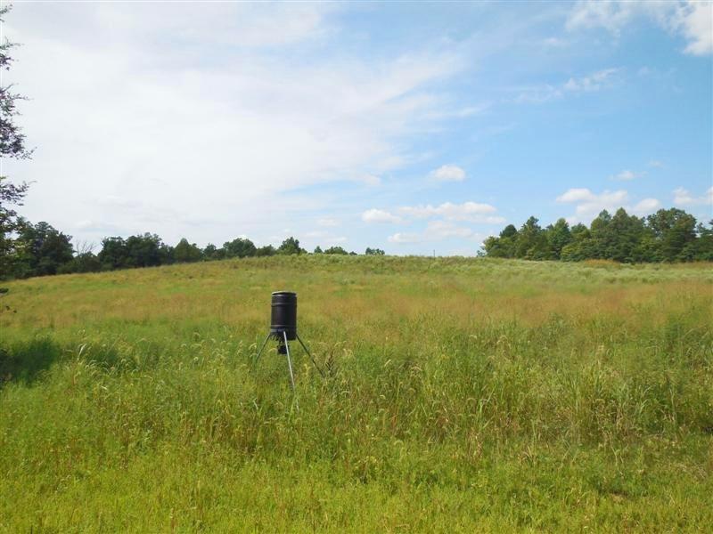 River Creek 223 : Munfordville : Hart County : Kentucky