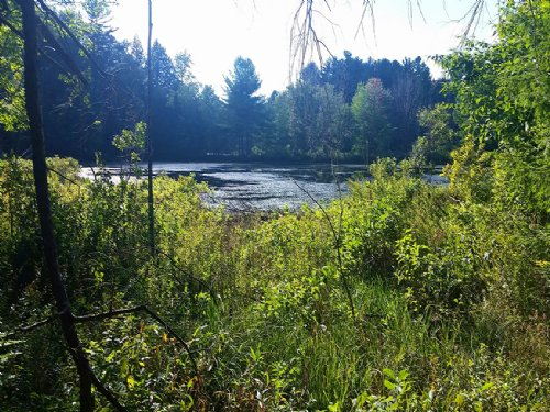 Waterfront Land Private Ponds Lake : Parish : Oswego County : New York