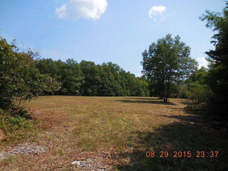 Level Building Lot : Gore : Frederick County : Virginia