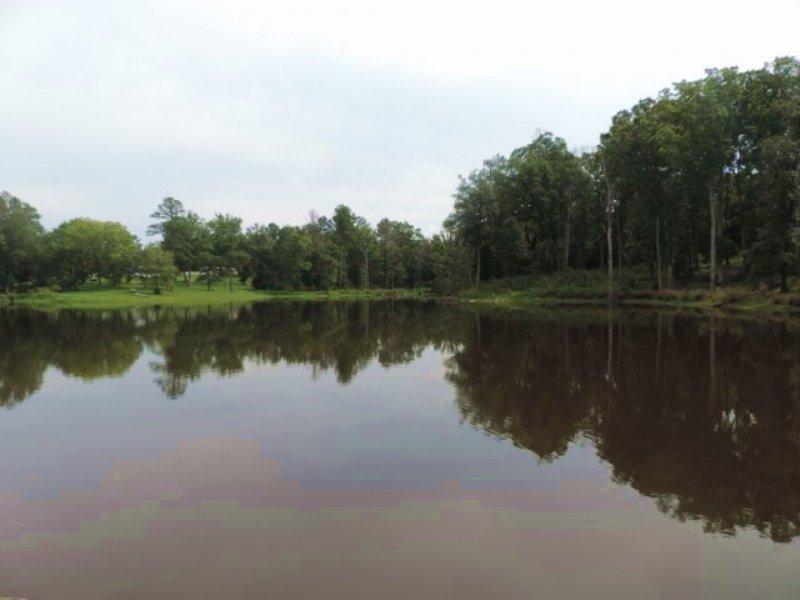 3 Acre Pond With Hardwood : Lincolnton : Lincoln County : Georgia