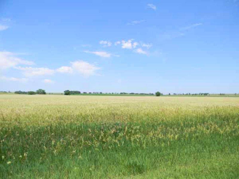 Smoky Gardens Farm And Ranch : Goodland : Sherman County : Kansas