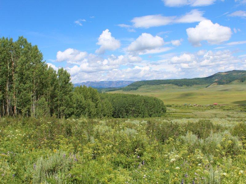 Rabbit Ear Retreat : Coalmont : Jackson County : Colorado