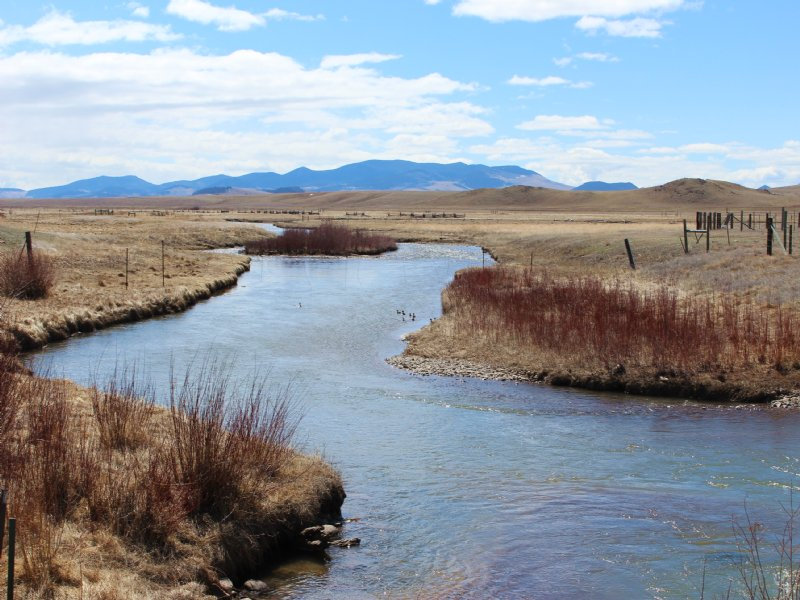 Hartsel Springs Ranch -price Reduce : Hartsel : Park County : Colorado