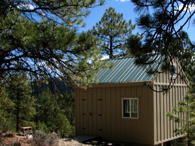 Tiny Cabin On Treed Acreage : Westcliffe : Custer County : Colorado