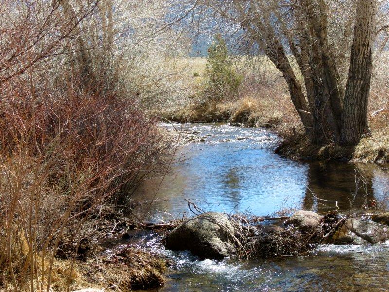 Cotton Creek Cabin : Saguache : Saguache County : Colorado
