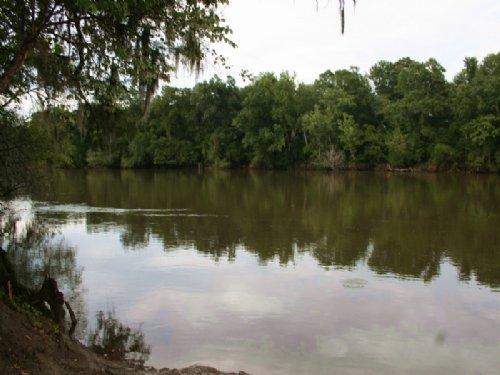 Riverfront Home Savannah River 7+ A : Clyo : Effingham County : Georgia