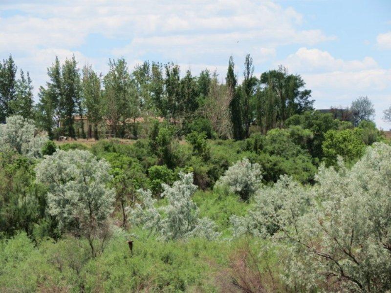 Trinidad River Hideaway : Trinidad : Las Animas County : Colorado