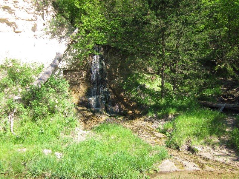 Reduced! Keya Paha County Wildlife : Springview : Keya Paha County : Nebraska