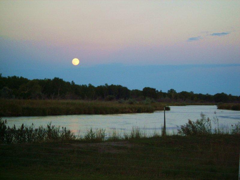 Moon River Ranch : North Platte : Lincoln County : Nebraska