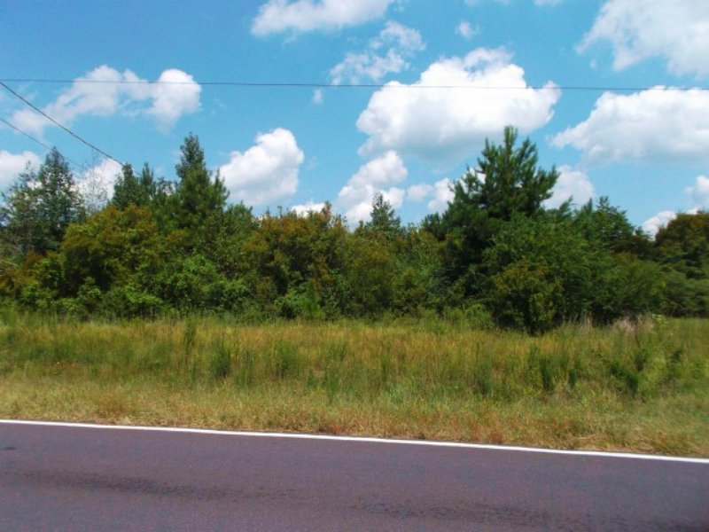 20.00 Acres Hunting Land, Timber : Jayess : Walthall County : Mississippi