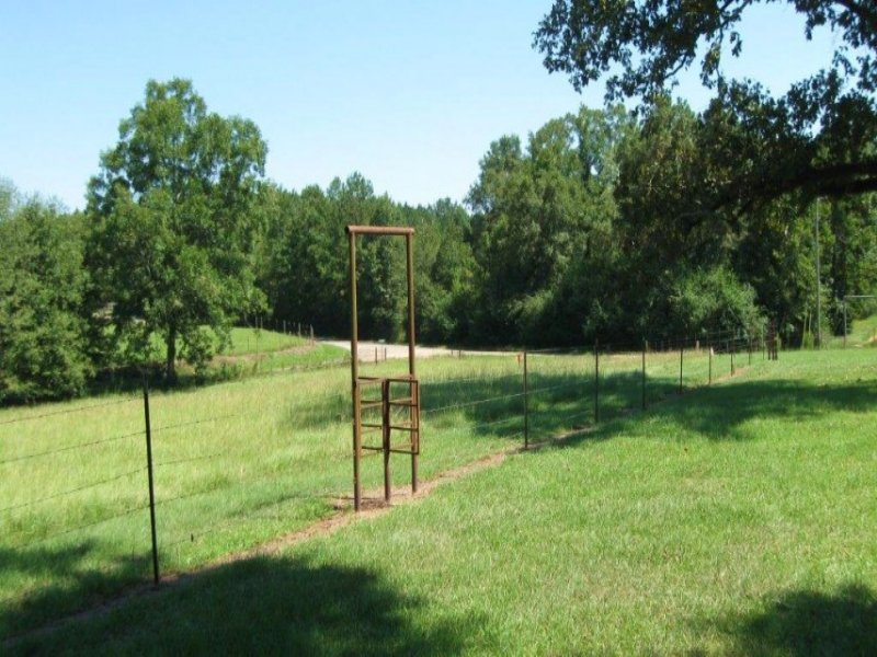 126 Van Holmes Road : Tylertown : Walthall County : Mississippi