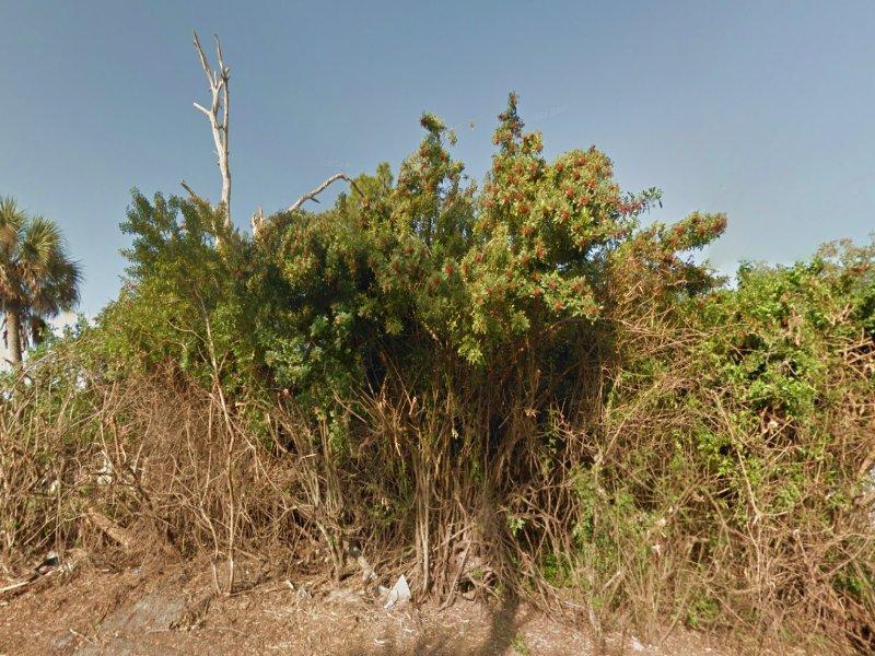 0.23 Acre Lot For Sale : Port Charlotte : Charlotte County : Florida