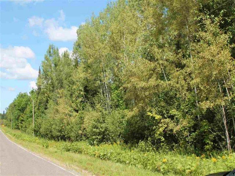 Bellaire Rd N Mls# 1090249 : Pelkie : Baraga County : Michigan
