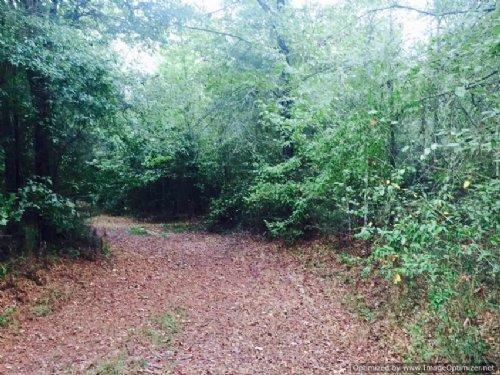 174 Acres : Camden : Madison County : Mississippi