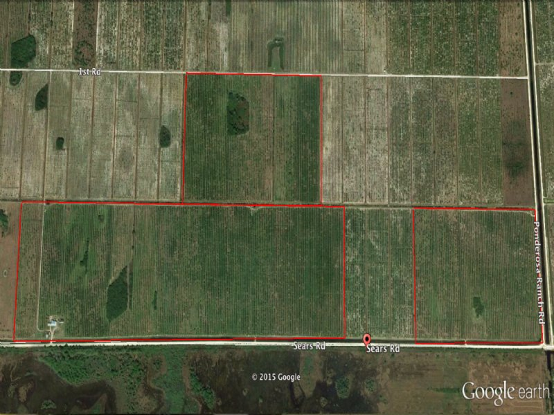 338 Acres Agriculture Land : Labelle : Hendry County : Florida