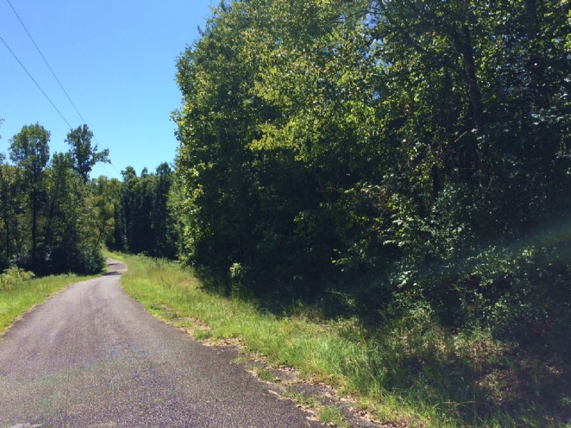 70ac - Affordable Hunting Tract : Ragland : Saint Clair County : Alabama