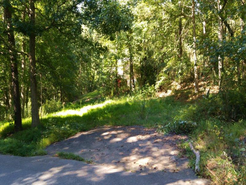 Pre-cleared Lake Lot W/ Utilities : Cumming : Forsyth County : Georgia