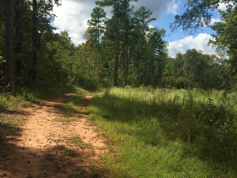 Mathis Road ~ 15.482 Acres : Haddock : Jones County : Georgia