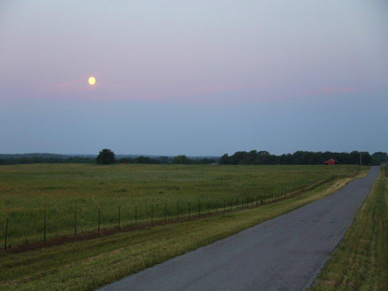 Dennis Farm : Whitesboro : Grayson County : Texas