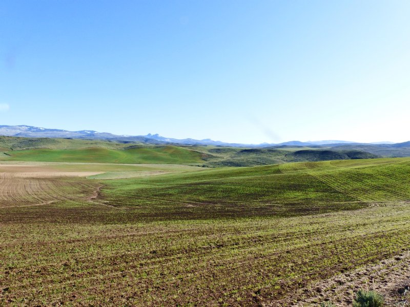 Little Cottonwood Creek Ranch : Craig : Moffat County : Colorado