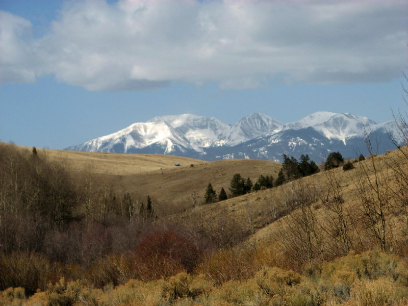 David's Land On Froze Creek : Westcliffe : Custer County : Colorado