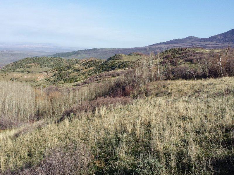 Wilderness Views - Price Reduced! : Craig : Moffat County : Colorado