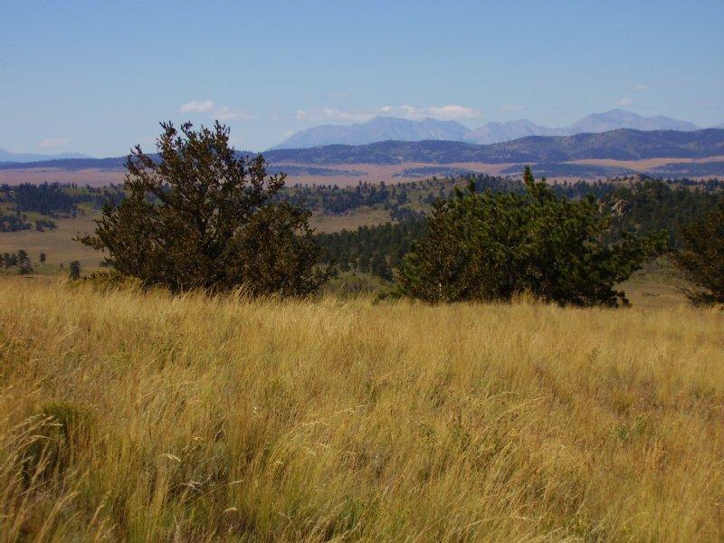 Park County Ranchette : Hartsel : Park County : Colorado