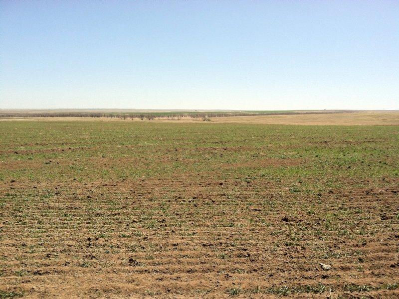 Agate Farm Ground : Agate : Elbert County : Colorado