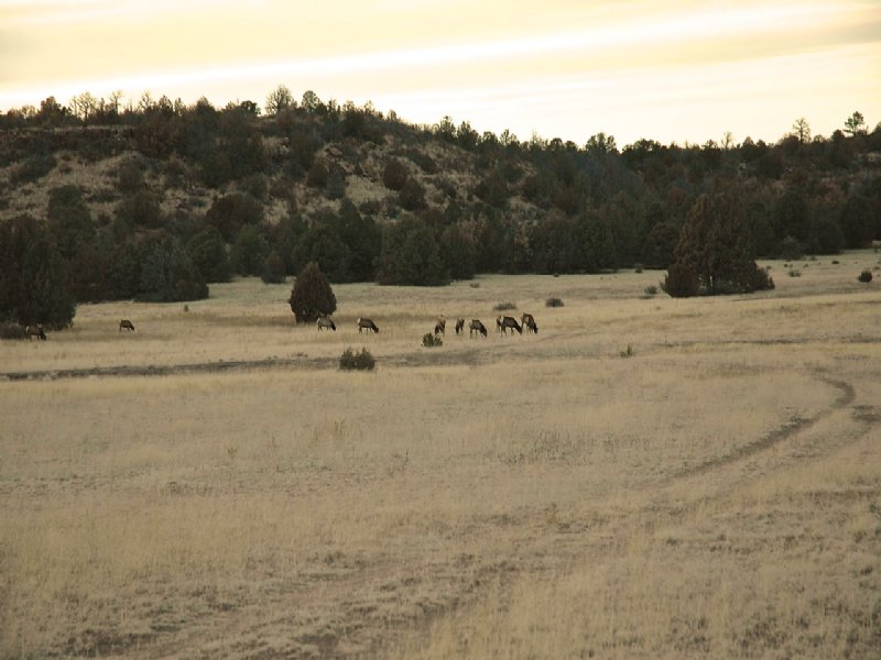 Lariat Ranch : Watrous : San Miguel County : New Mexico